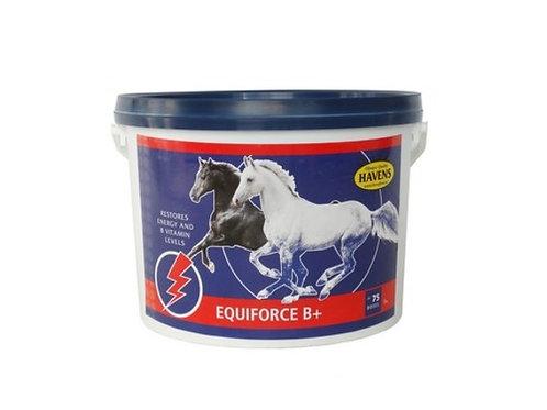 Equiforce B+