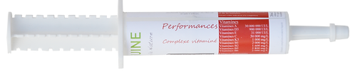 Performances Booster polyvitamines