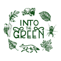 into-the-green logo