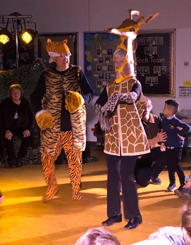 Tiger and giraffe.jpg