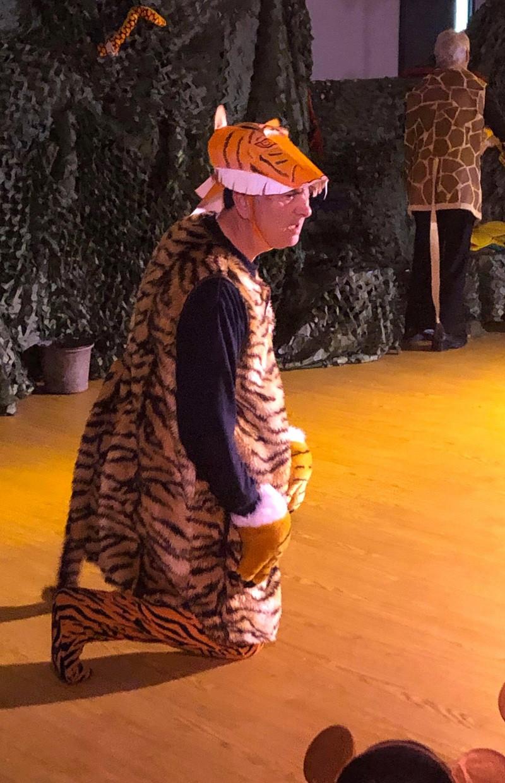 Tiger in zoo 1.jpg