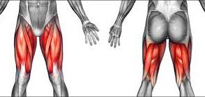 UPPER LEG/THIGH PAIN