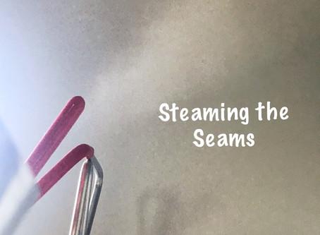 Seamstress Steams Seams Sensationally!