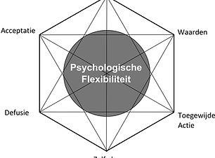 Figuur-1.2-ACT-Hexaflex.jpg