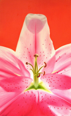 flower, an object of daily use II