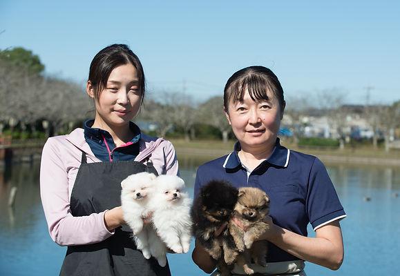 201025撮影母娘子犬4頭2.jpg
