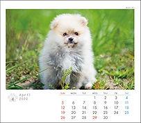 wix119_edited.jpg