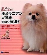 syoseki_1.jpg