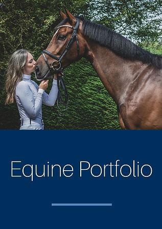 Equine portfolio.jpg