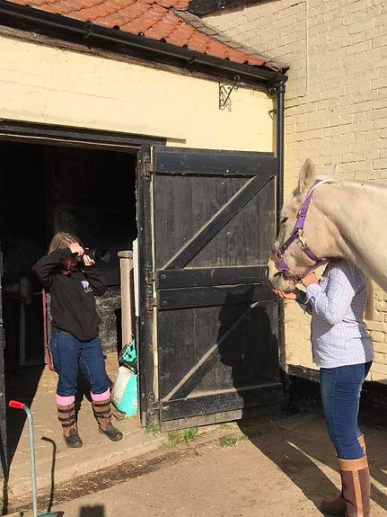 Laura V Photgraphy   Equine Photographer   Horse Photographer UK   Norfolk