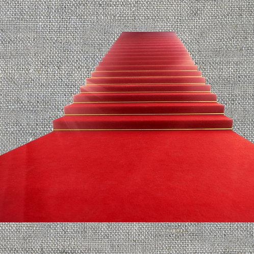 Красная ковровая  дорожка 8 м