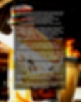 The Exotic BBQ Book back cover.png