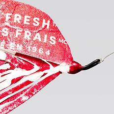Plastic flies Carousel_0000s_0000_05 cop