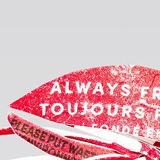 Plastic flies Carousel_0000s_0001_05 cop