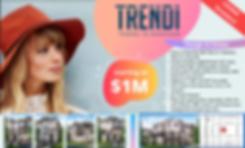 Copy of Trendi town facebook flyer (1).p