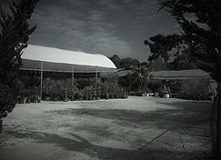 Loja Casa das Plantas