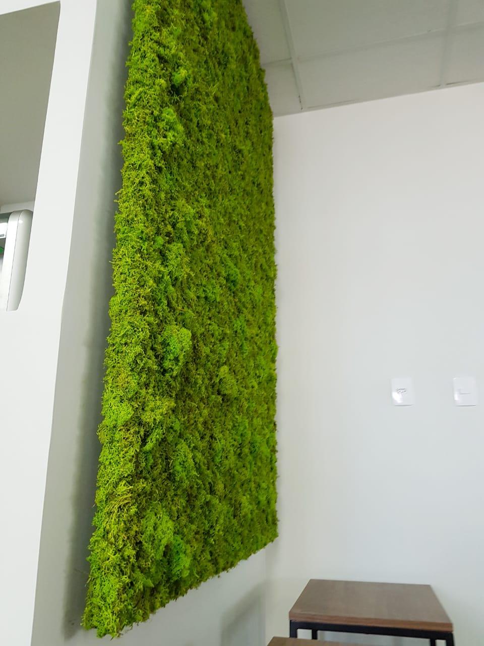 Parede verde musgo
