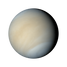 Venus.png