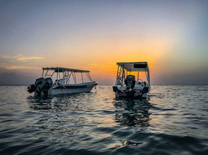 Boatsboatsboats.jpg