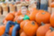 pumpkin boy.jpg
