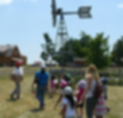 Farm Tour at the Windmill