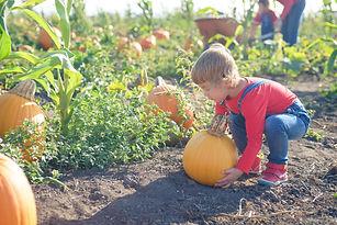 pumpkin squat.jpg