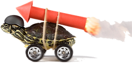 Helmeted Turtle On Wheels With Rocket Strapped To Back