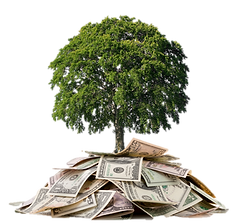money-tree.png