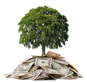 money-tree.png