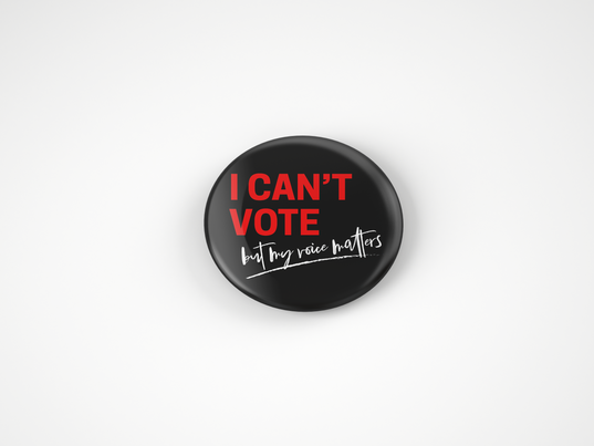 can't vote mock up.png