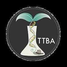 2. TTBA_db.png