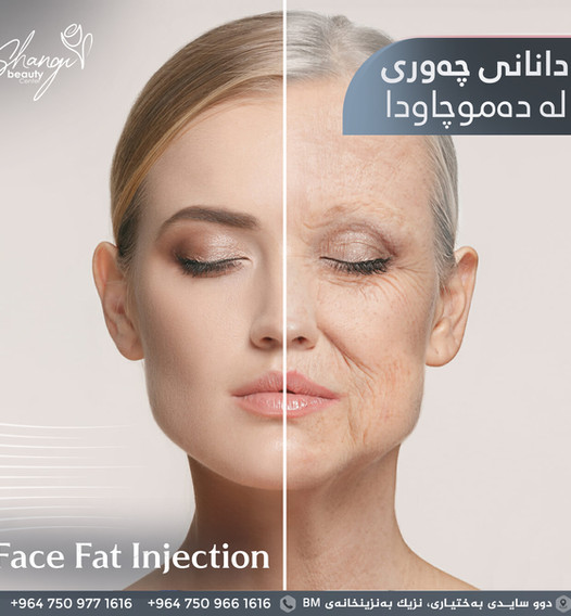 18-2 face fat injection copy.jpg