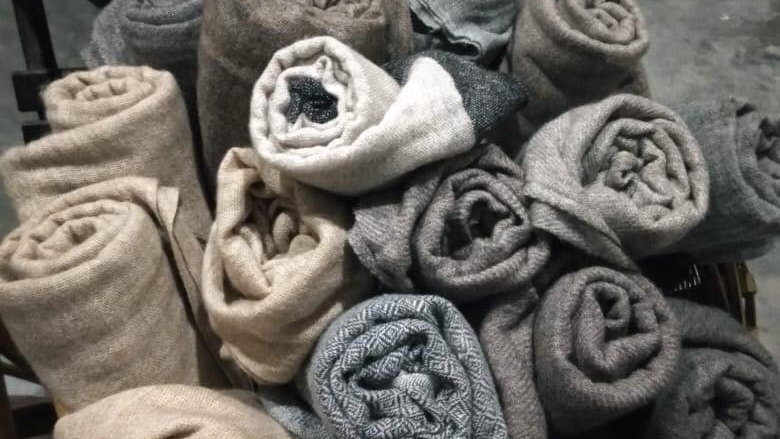 Cashmere Scarves - 100% Chashmere