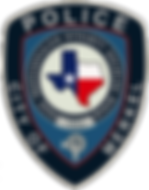 MPD Patch Embossed.png