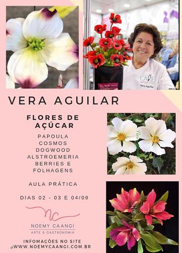 Vera Aguilar.png