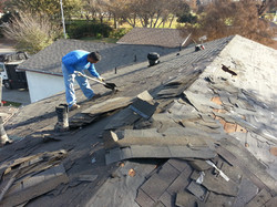 Covina Composition Shingles During.jpg