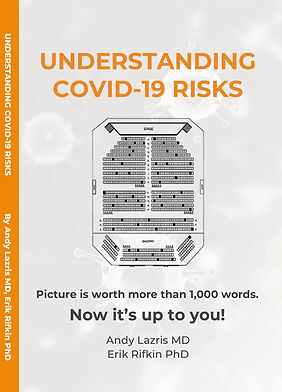 cover short covid book.jpg