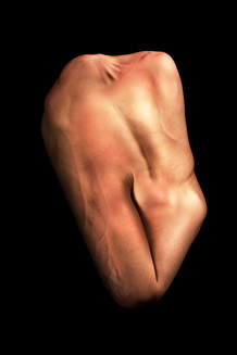 Body 17