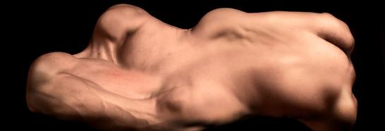 Body Series