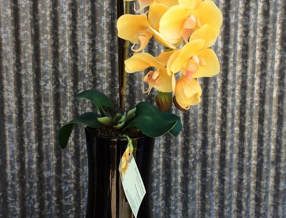 Yellow Orchid Arrangement (Everlasting)