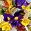 Thumbnail: Spring Posy