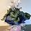 Thumbnail: Potted Cyclamen