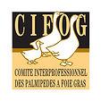 logo cifog .jpg