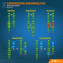 chromosome_abnormalities_factsheet_0.jpg