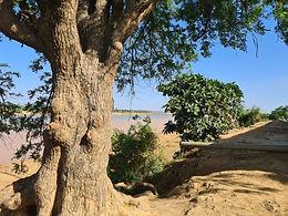 Fodié Youssouf et la création d'une école coranique « kharangnimbé »