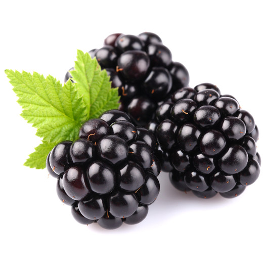 Blackberry Seed Oil Skin Care Benefits