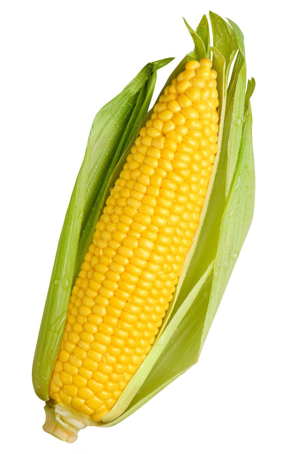 Gluconolactone is derived from Corn