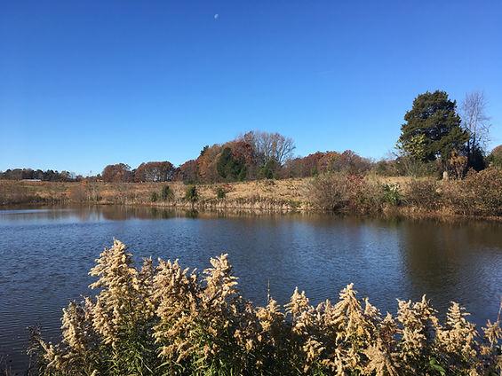 Clark's Creek Nature Preserve