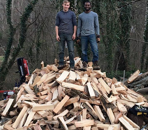 Wood Tree Service Gatlinburg.jpg