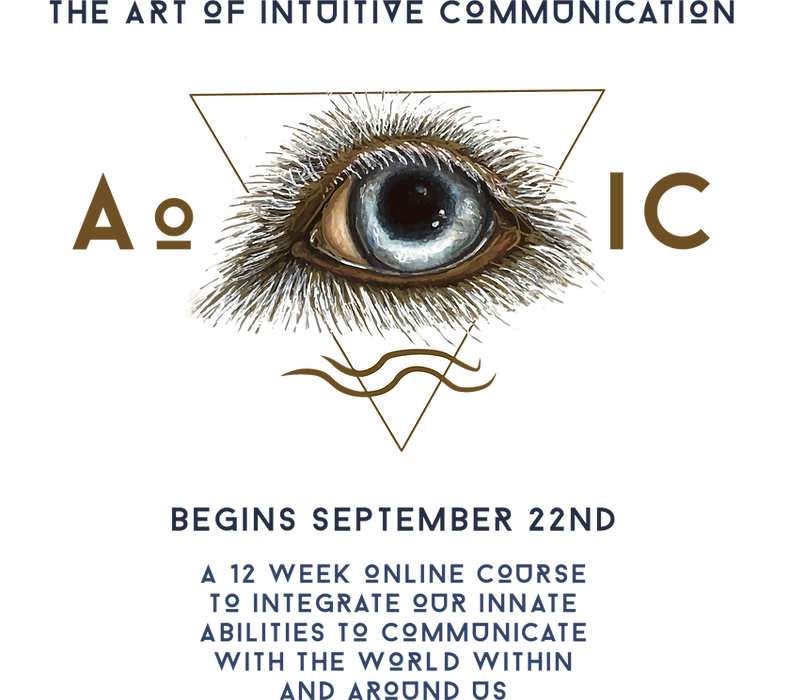 AoIC Logo Website. png.png